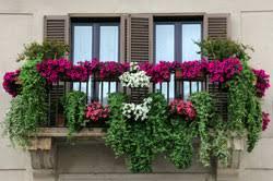 balkon blumen balkon mit blumen bepflanzen kreative pflanzideen und