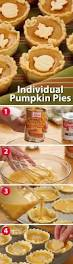 16 best pumpkin delight images on pinterest autumn biscuits and