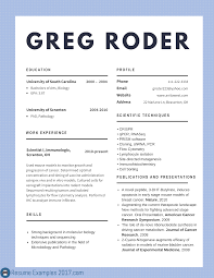 Samples Of Achievements On Resumes by Best Cv Examples 2017 To Try Resume Examples 2017