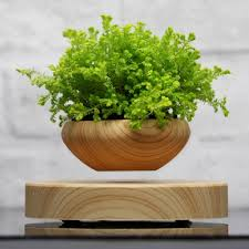 online buy wholesale wooden plant pots from china wooden plant