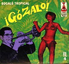 tropical photo album 207 best tropical lps images on album covers tropical