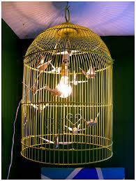Birdcage Pendant Light Chandelier Chic Birdcage Chandelier Light 105 Birdcage Chandelier Light Bird