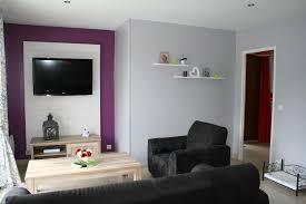 chambre prune et blanc mur violet et gris collection avec emejing salon gris blanc noir
