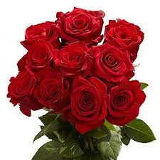 free shipping flowers 17 of the best places to order flowers online