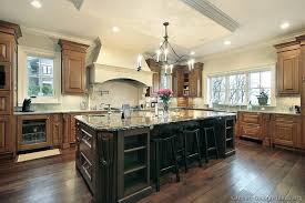 traditional kitchen islands pictures of kitchens traditional medium wood cabinets golden