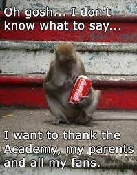 Meme Monkey - 30 funny animal captions part 18 30 pics funny monkey meme