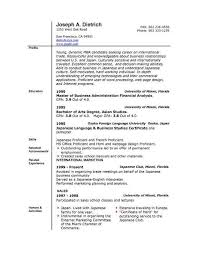 Resume On Microsoft Word 2010 Download Professional Resume Template Word 2010