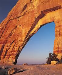 moab lions back arches national park foundation