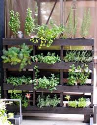 wooden pallet garden ideas photograph wooden pallet garden