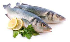 fish in a gout diet u2014 experiments on battling gout