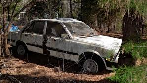 peugeot 505 trapped by trees 1981 peugeot 505