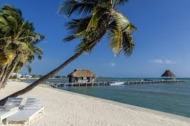 ambergris caye belize travel guide tropical discovery