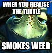 Finding Nemo Meme - finding nemo turtle memes imgflip