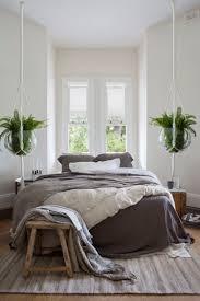 plante verte chambre à coucher les plantes reprsentent elles un danger dans la chambre idées