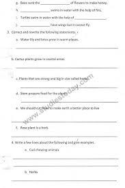 worksheet for class 1 english kvs english kendriya vidyalaya