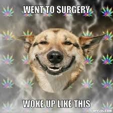 I Woke Up Like This Meme - i woke up like this meme