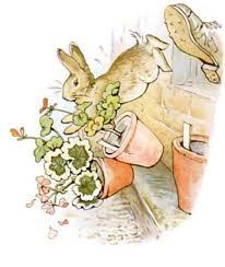 beatrix potter peter rabbit illustrations artists