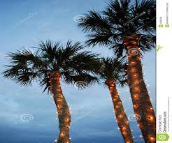 artificial christmas palm trees for sale best images collections