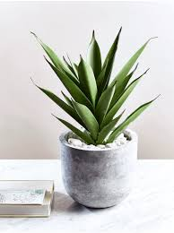 Modern Accessories For Home Decor Adorable Modern Home Accessories Uk And Modern Home Accessories