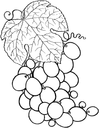nice fruits coloring pages 26 215