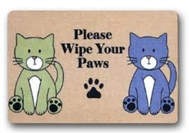 Wipe Your Paws Mat Decorative Buy Bravovision Custom Wipe Your Paws Decorative Non Slip Indoor
