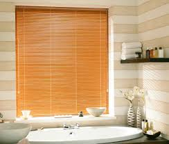 Blinds For Uk Romans And Rollers Blinds Curtains For Sash Windows Pinterest