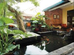 ornamental fish pond designs the home front