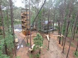 charleston zip line adventures the only zip line canopy tour in
