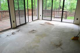How To Pull Up Carpet From Hardwood Floors - ripping up a rug u0026 removing the rug pad u0026 tack strips young