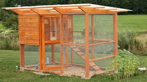 building a simple chicken coop plans with chicken coop blueprints