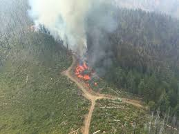 Wildfire Brookings by Buckskin Fire Near Cave Junction At Nearly 4 800 Acres 25 Percent