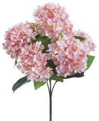 pink hydrangea pink hydrangea bundle paul michael company
