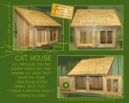 cat outdoor house