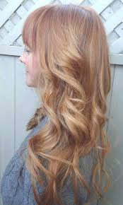 light strawberry blonde hair color chart lowlights for strawberry blonde hair google search beauty