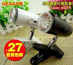 online get cheap bird heat lamp aliexpress com alibaba group