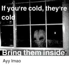 Ayy Lmao Meme - if you re cold they re cold bring them inside ayy lmao ayy lmao