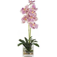 vanda orchid silk vanda orchid arrangement with glass vase free shipping
