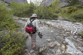outdoor life marcel huijser photography outdoor life in montana bethanie