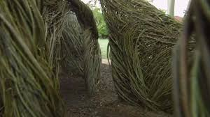 sculptor uses tree saplings to rebuild south florida area