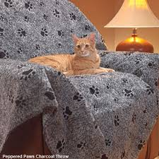 best black friday couch deals black friday and cyber monday the best deals for cat lovers catster