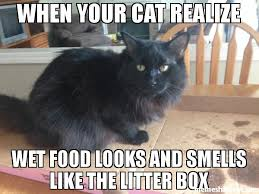 Wet Cat Meme - when your cat realize wet food looks and smells like the litter box meme