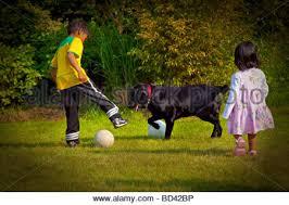 Kids Playing Backyard Football Playing Soccer With Dog In Backyard Stock Photo Royalty Free