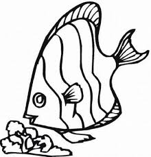 impressive free fish coloring pages color 5096 unknown
