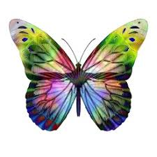 meaning of seeing certain colored butterflies