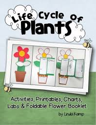 life cycle of plants 20 activities u0026 foldable flower project book