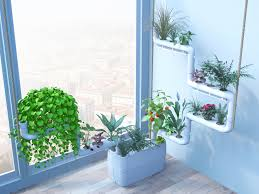 Room With Plants Clean Indoor Air With Plants Air Purification At Home And Office