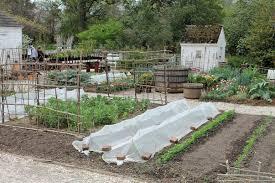 Wpa Rock Garden by Maryland Virginia D C Garden Housecalls