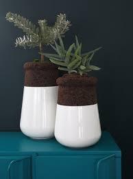 soma planter design amorim isolamentos