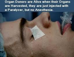 Donation Meme - organ donation sget info
