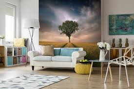 mural print custom wall murals wall printing background